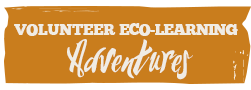 Edu-Eco Learning Adventures